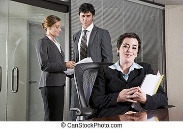 Three office workers meeting in boardroom
