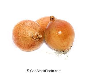 Three onions over white