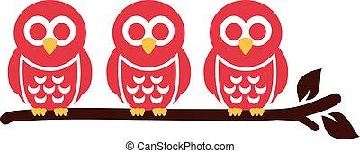 Three Owls sitting on a branch