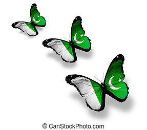 Three Pakistani flag butterflies, isolated on white