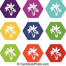 Three palm trees icon set color hexahedron