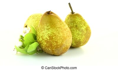 Three pears rotating on white background.