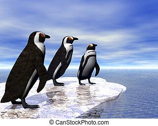 Three Penguins - Three penguins on an ice flow