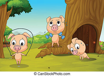 Three pigs at the forest