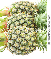 Three pineapple head on white background.