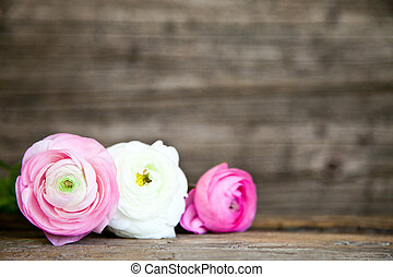 Three Pink and White Flowers with Wood Background