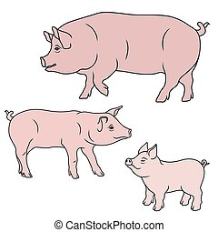 Three pink pigs - Big Pig, Sow and Piglet, cartoon vector...