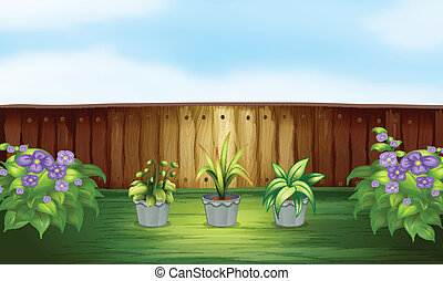 Three plants in a pot inside the fence