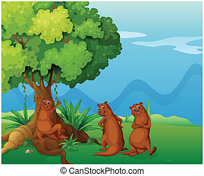 Three playful wild animals near the big old tree