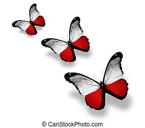 Three Polish flag butterflies, isolated on white