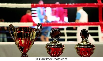 Three prize cups at background of fighters on action at boxing ring
