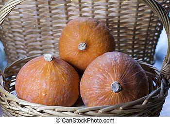 three pumpkins in a wicker basket