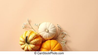 Three pumpkins laid on herbs - From above view of orange and...