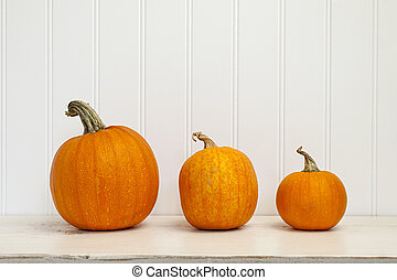 Three pumpkins of various sizes sitting in a row on white...