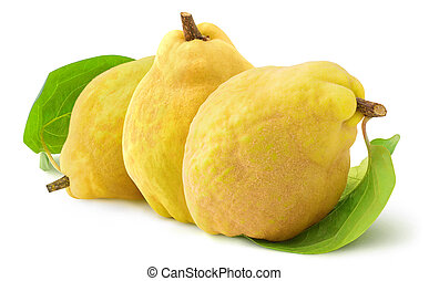 Three quince fruits on white background