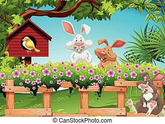 Three rabbits in the garden