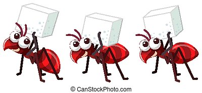 Three red ants with sugar cube on white background
