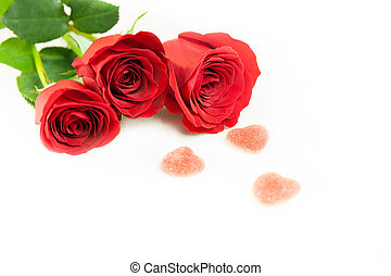 Three red roses on a white backgrou