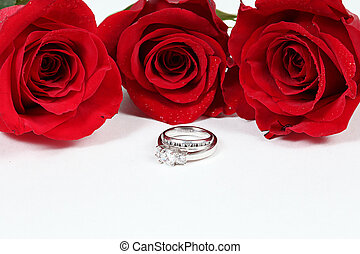 Three Red Roses on white with rings