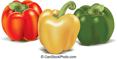 Three ripe colored sweet peppers. Vector illustration.