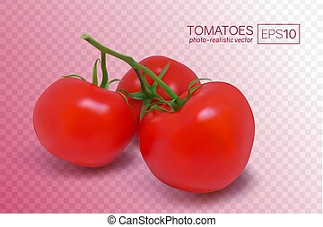 Three ripe red tomatoes on a branch
