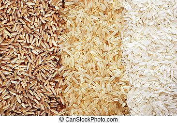 Three rows of rice varieties - brown, wild and white. - Food...