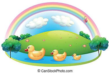 Three rubber ducks near the hill