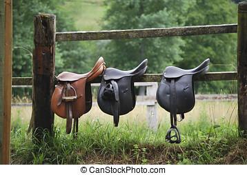 Three saddles - Leather saddles ready to put on the...