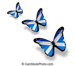 Three Scottish flag butterflies, isolated on white