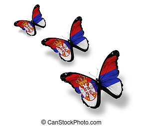 Three Serbia flag butterflies, isolated on white