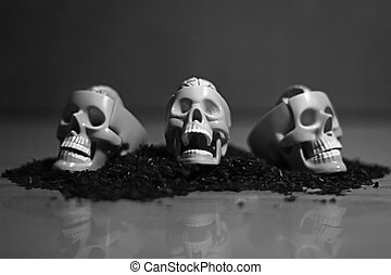 three skulls in a row black and white