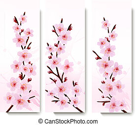 Three spring banners with blossoming sakura branches. Vector illustration.