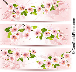 Three spring banners with blossoming sakura brunch with spring flowers. Vector illustration.