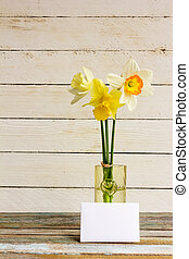 Three spring flower yellow and white daffodils with Golden wedding rings in glass vase with greeting blank card on a white wooden background. The Provence style, rustic. With space for text