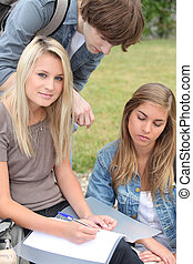Three students studying in the park