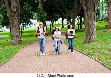 walking to class - three students walking to class