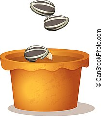 Three sunflower seeds in the potted plant on white background