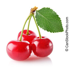 three sweet juicy cherry with green leaf