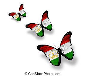Three Tajik flag butterflies, isolated on white