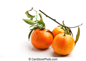 three tangerines on a white background