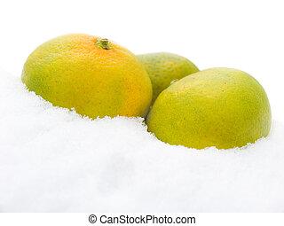 Three tangerines on snow