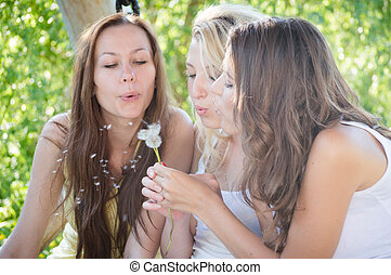Three teenage girls blow away dandelion on summer day outdoors