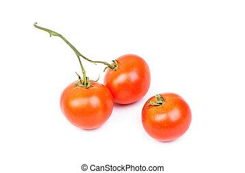 Three tomatoes isolated on white background