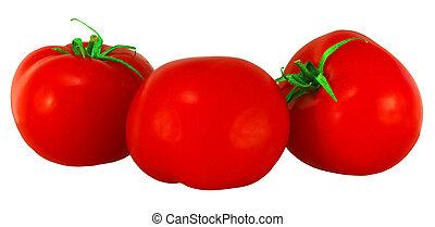 three tomatos on a white background