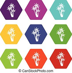Three tropical palm trees icon set color hexahedron