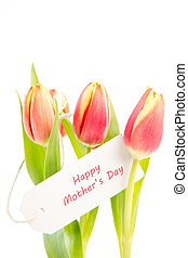 Three tulips with a happy mothers day card