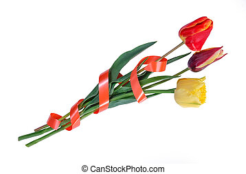 Three tulips with tape