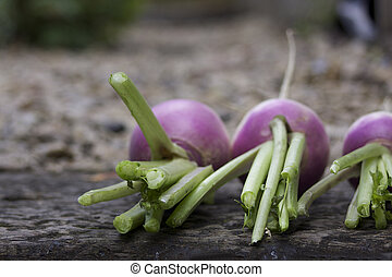 Three Turnips - Three freshly harvested organically grown...