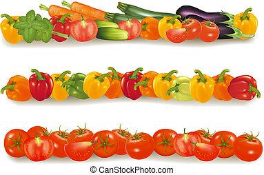 Three vegetable design borders. Photo-realistic vector