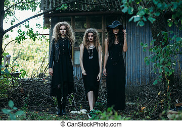 Three vintage witch go to the Sabbat eve of Halloween